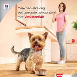 Consumenten poster Canine